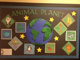 Animals bulletin board