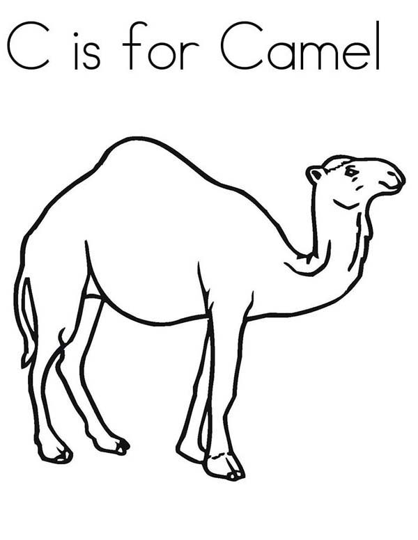 C-is-for-Camel-Coloring-Page