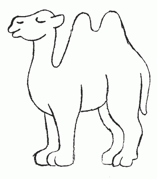 Camel-Coloring-Pages