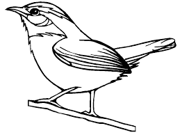 Canary coloring page for preschool