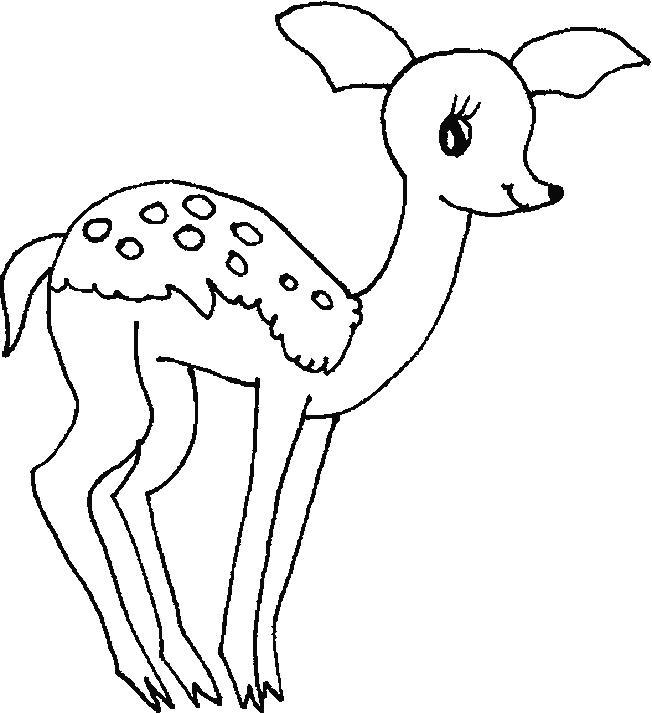 Deers-coloring-page
