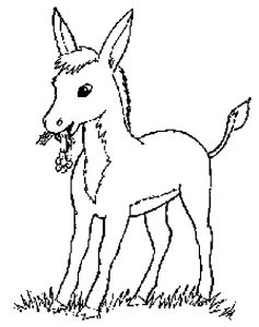 Donkeys-coloring-page-