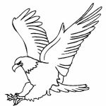 Download free printable Eagle coloring pages ideas for preschool