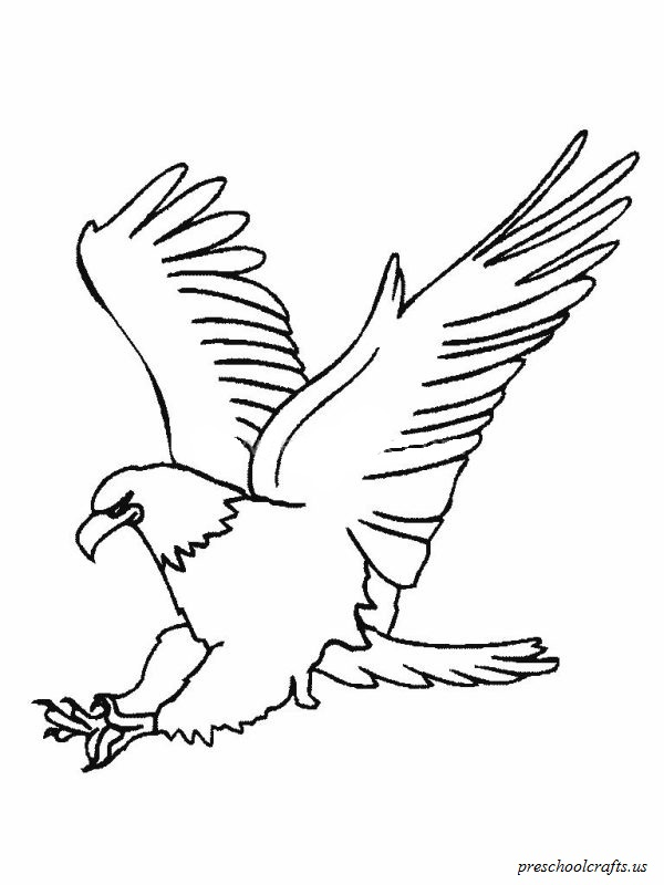Download free printable eagle colouring page for preschool for Eagle coloring pages printable