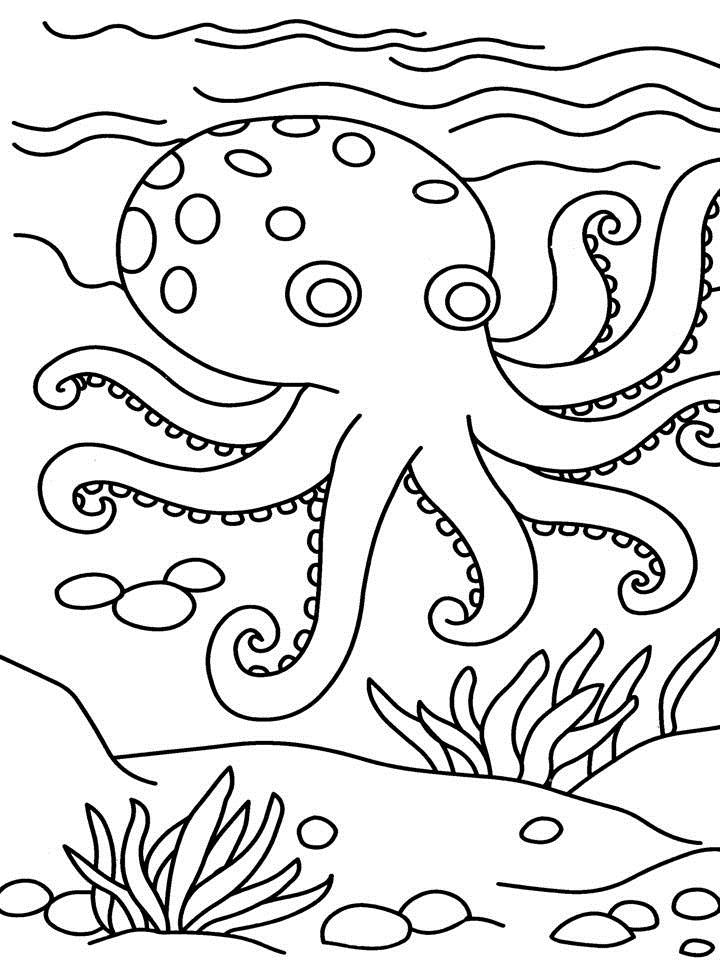 Free-Octopus-Coloring-Pages