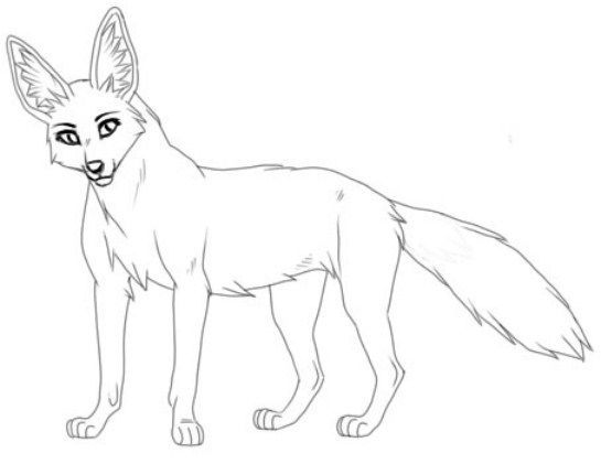 animals-Jackal-printable-coloring-pages-for-preschool