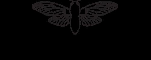 animals- cicada -printable-coloring-pages-for-preschool