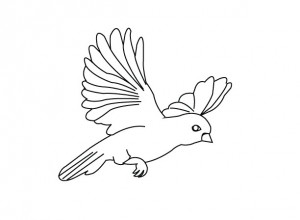 bird coloring page 2