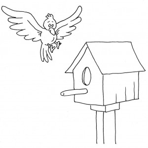 bird home pages