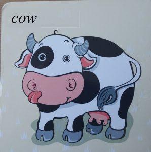cow image