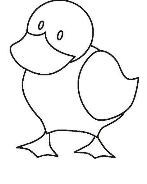 duck worksheet