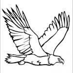 eagle related coloring page
