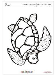 free Turtle coloring pages for preschool