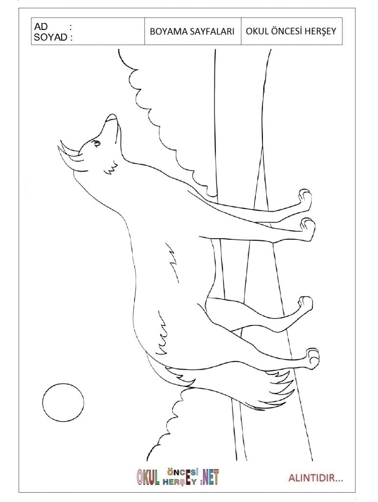free-animals-Jackal-printable-coloring-pages-for-kids