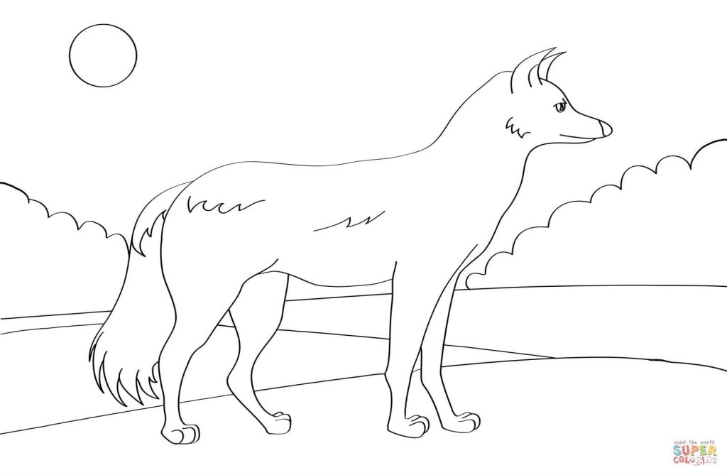 free-animals-Jackal -printable-coloring-pages-for-preschool