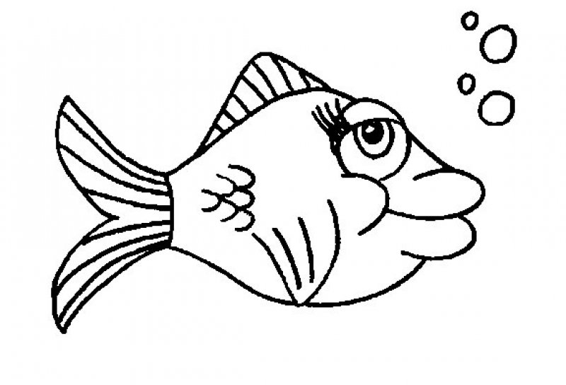 free-animals-beatifull-fish-printable-coloring-pages-for-preschool