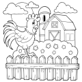 free-animals-cock-printable-coloring-pages-for-firstschool
