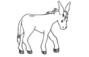 free-animals-donkey-printable-coloring-pages-for-preschool