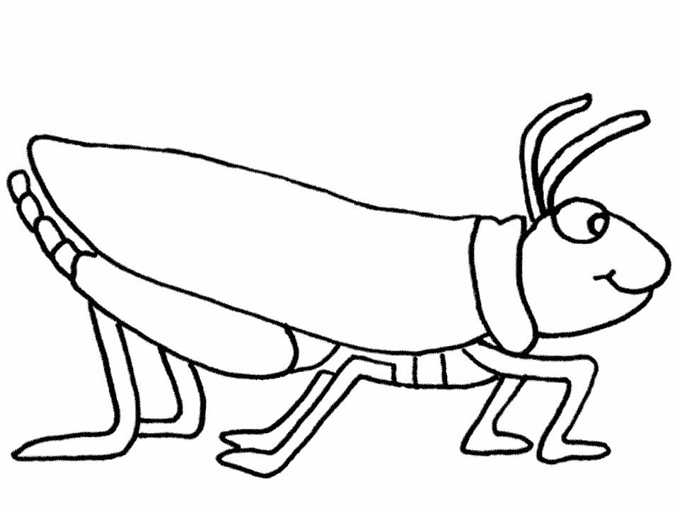 free-animals-grasshopper-printable-coloring-page-for-preschool
