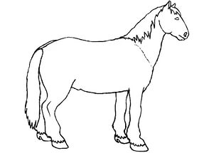 free-animals- horse -printable-coloring-pages-for-preschool