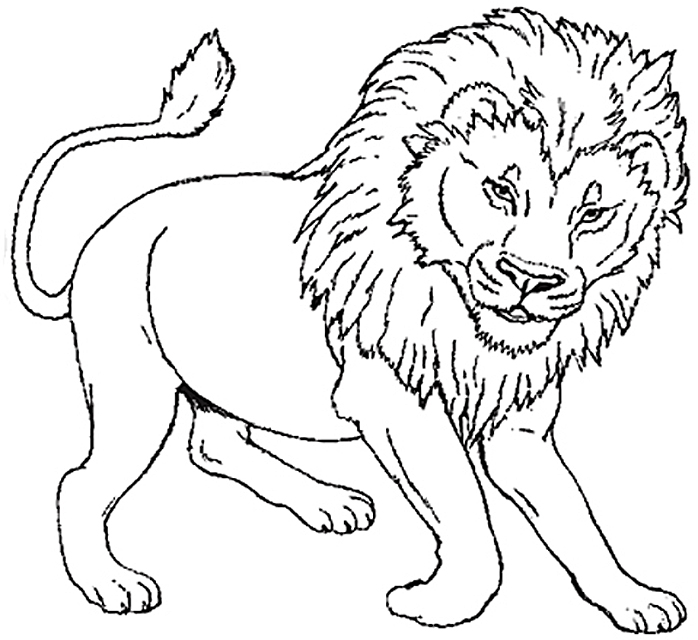 Lion Coloring Pages on Back To School Preschool Worksheets
