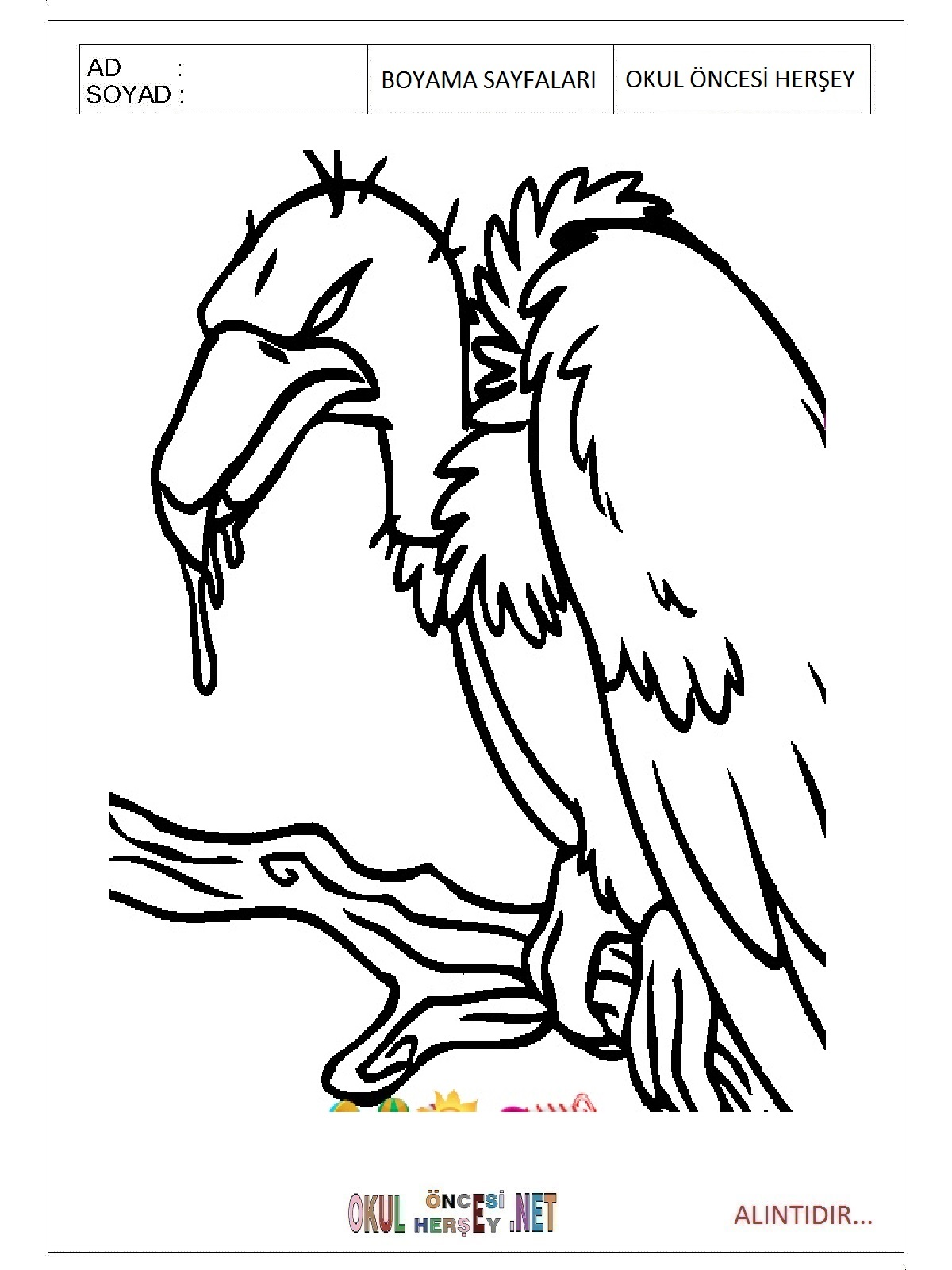 Vulture Coloring Pages Preschool