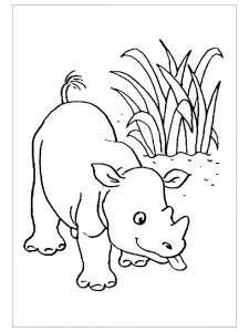 free-animals-printable-coloring-pages-for-preschool