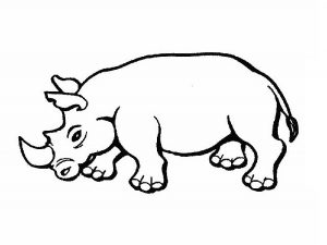 free-animals-rhino-coloring-pages-for-preschool