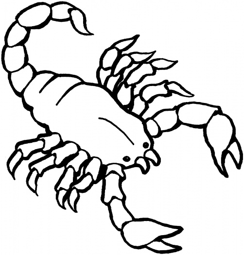 free-animals- scorpion-printable-coloring-pages-for-preschool