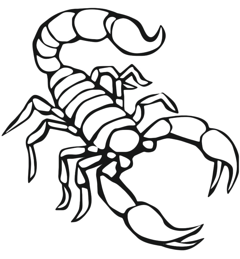free animals scorpion printable coloring pages for preschool