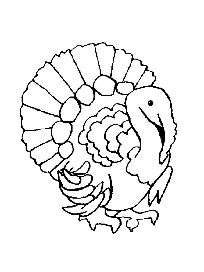 kindergarten turkey coloring pages | free-animals-turkey-coloring-pages-for-preschool ...