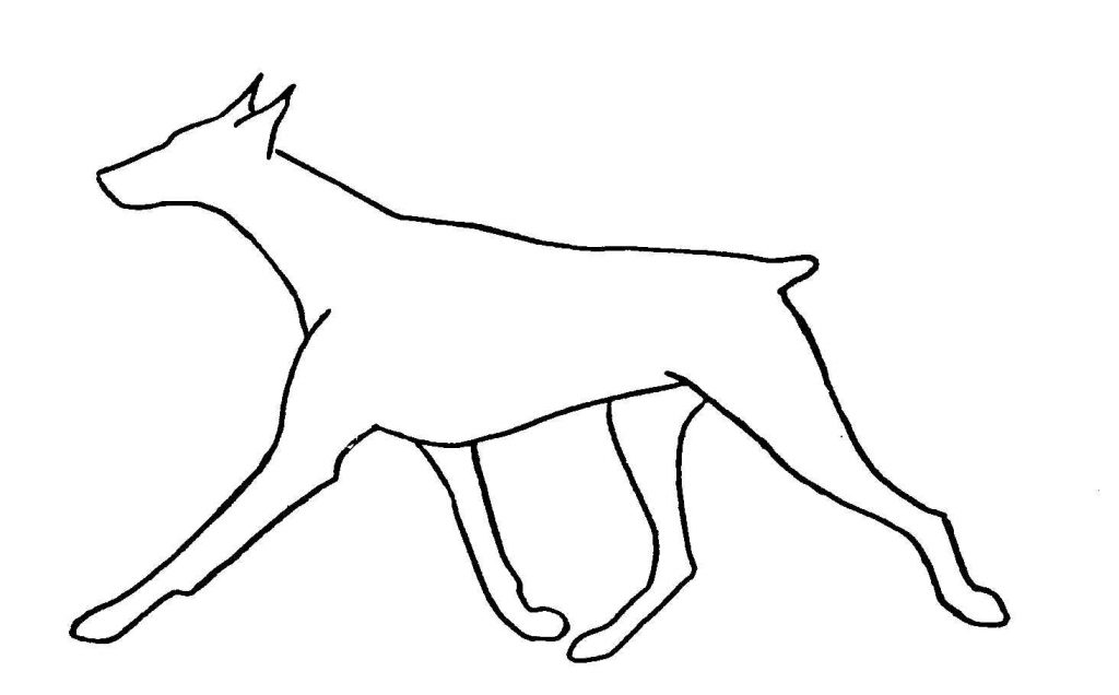 Doberman Coloring Pages Printable Coloring Pages Doberman Coloring Pages