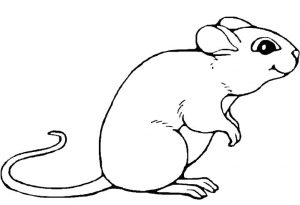 free-mouse printable-coloring-pages-for-preschool