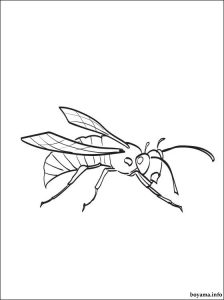 Hornet coloring pages for kids