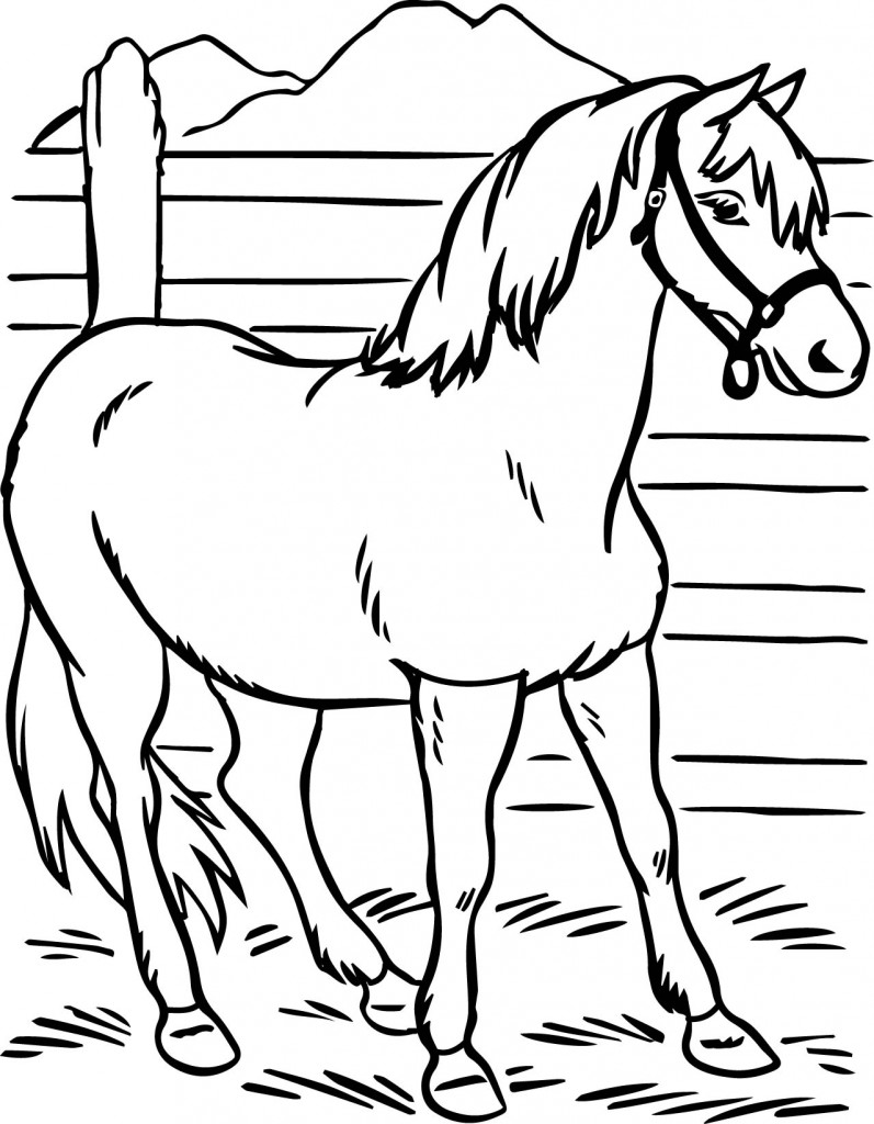 Horse coloring pages preschool and kindergarten for Preschool coloring pages