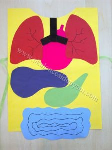 human body craft for preschool bulletin board