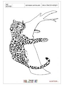 jaguar coloring pages for preschool