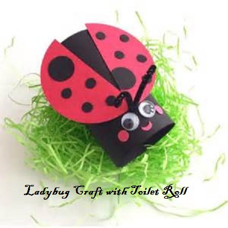ladybug-craft-from-toilet-roll-for-kids