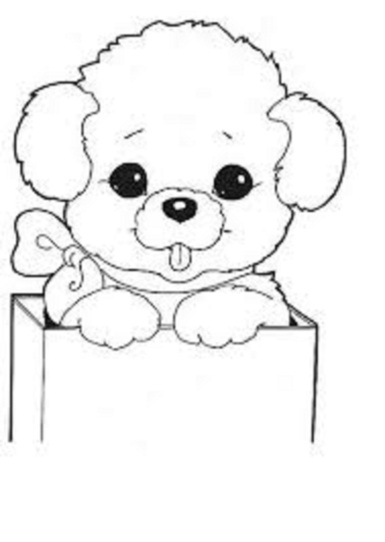 Dog coloring pages for kids preschool and kindergarten Coloring book for kinder