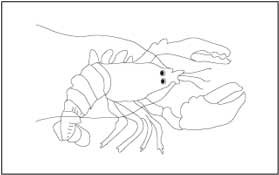 printable lobster coloring pages
