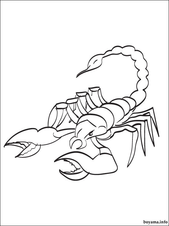 scorpion-colouring-pages