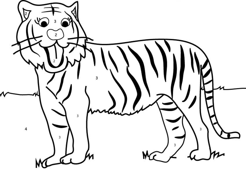 tiger coloring pages for kids - tiger coloring numbers kids girls boys children