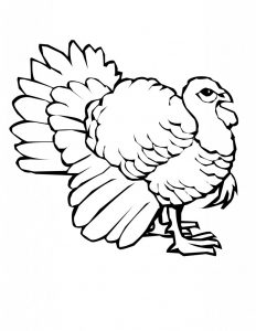 turkey-coloring-pages-printable