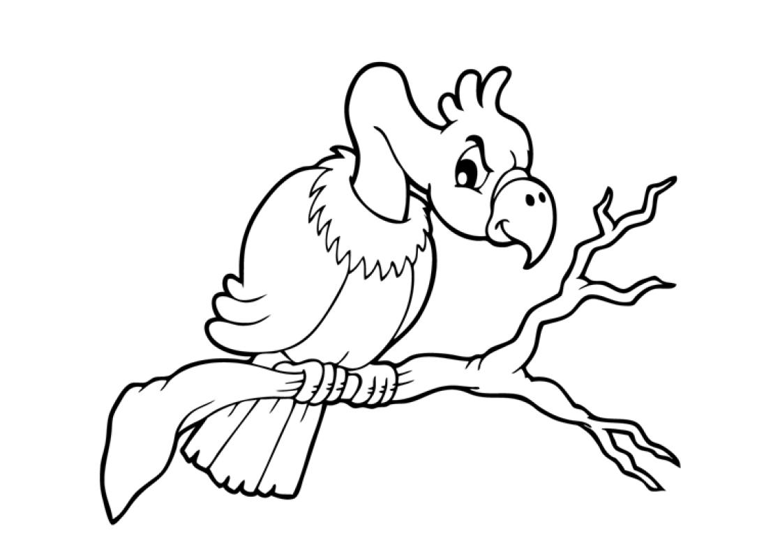 vulture coloring-page