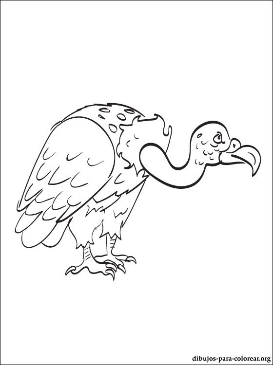 vulture-coloring page
