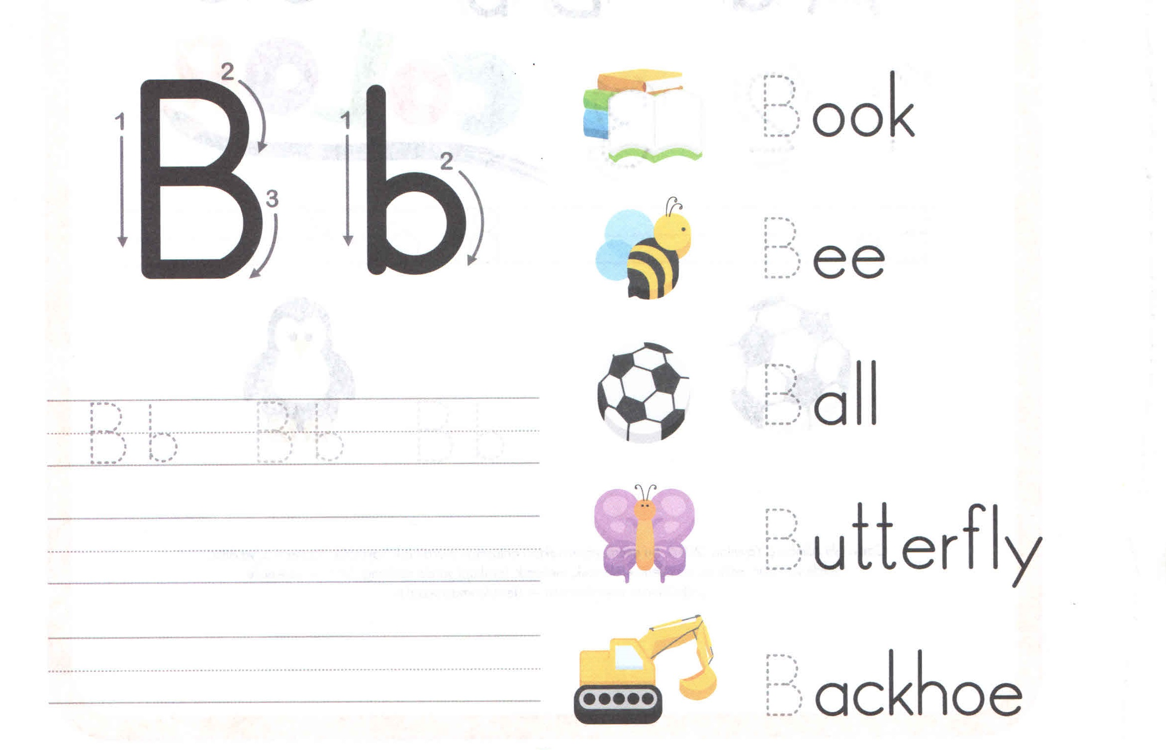 worksheet Letter B Worksheets For Preschool alphabet capital and small letter b worksheet for kids kids