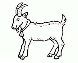 Goat Colouring Pages for kids