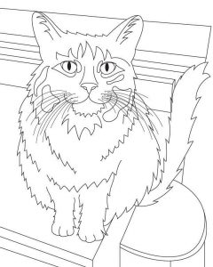 catcoloringpage