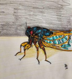 free cicada crafts ideas for kid