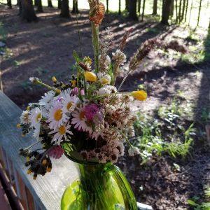 free cicadas craft ideas for kid